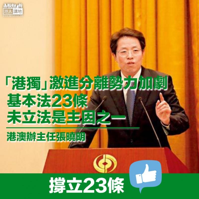 【國家安全】張曉明:「港獨」等激進分離勢力加劇 23條未立法是主因之一