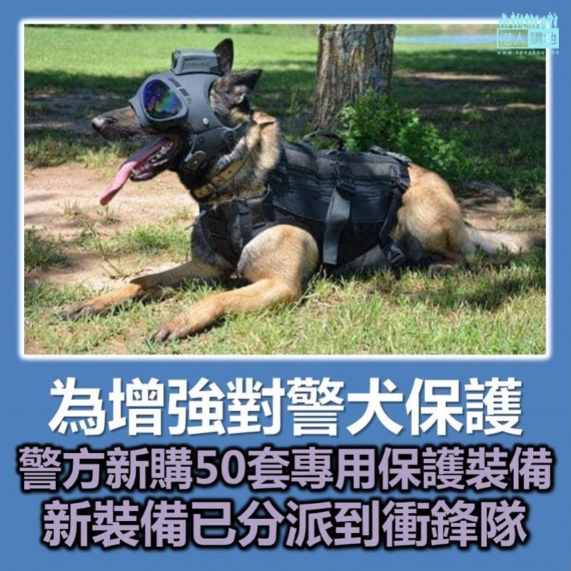 【全新裝備】50套警犬專用保護裝備隨時可應用