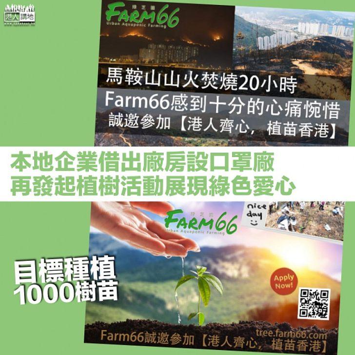 【植苗香港】馬鞍山山火焚燒20小時 本地企業發起植樹活動