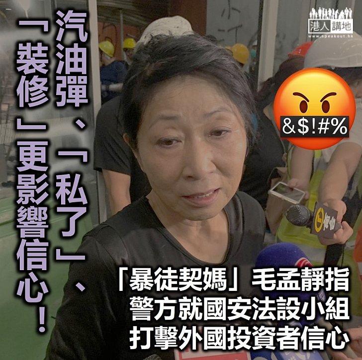 【港區國安法】「暴徒契媽」毛孟靜指警方就國安法設小組將打擊外國投資者信心
