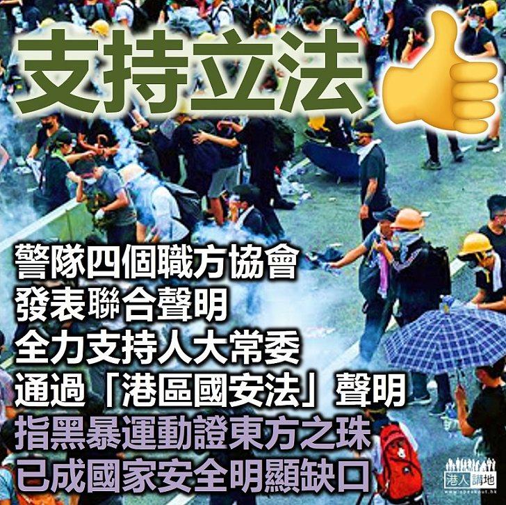 【港區國安法】警隊四個職方協會發表聯合聲明全力支持人大常委通過「港區國安法」