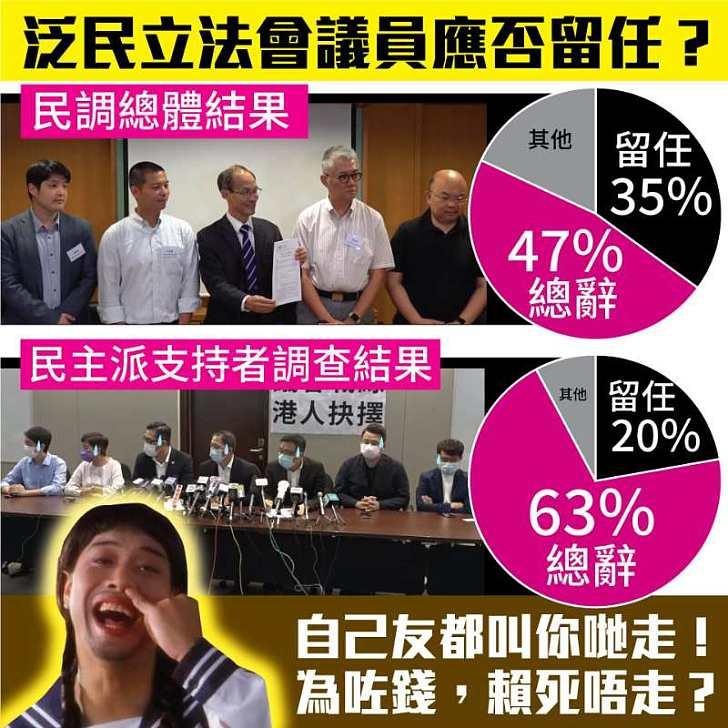 【今日網圖】泛民立法會議員應否留任?