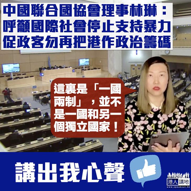 【向國際發聲】中國聯合國協會理事林琳:籲國際社會停止撐暴、促政客勿再把香港作政治籌碼