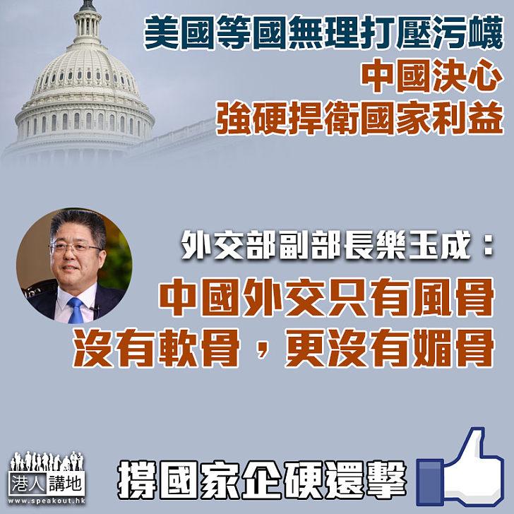 【企硬還擊】美國等國無理打壓污衊 中國決心強硬捍衛國家利益