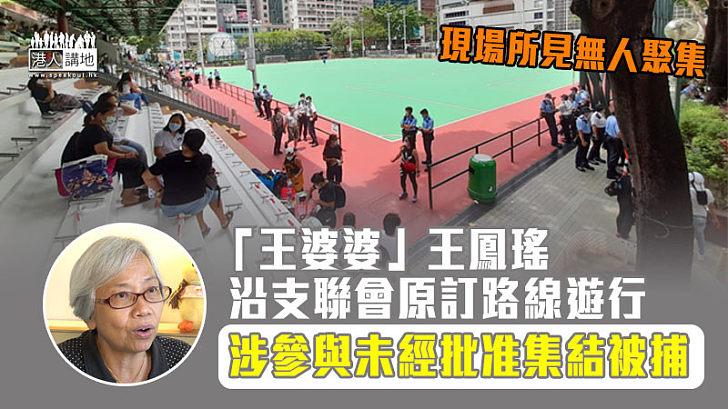 【非法集會】沿支聯會原訂路線遊行 「王婆婆」王鳳瑤涉參與未經批准集結被捕