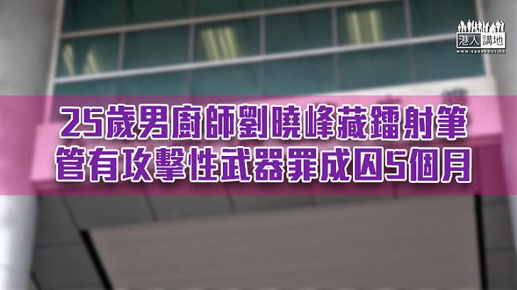 【反修例風波】25歲男廚師藏鐳射筆管武罪成 遭判囚5個月